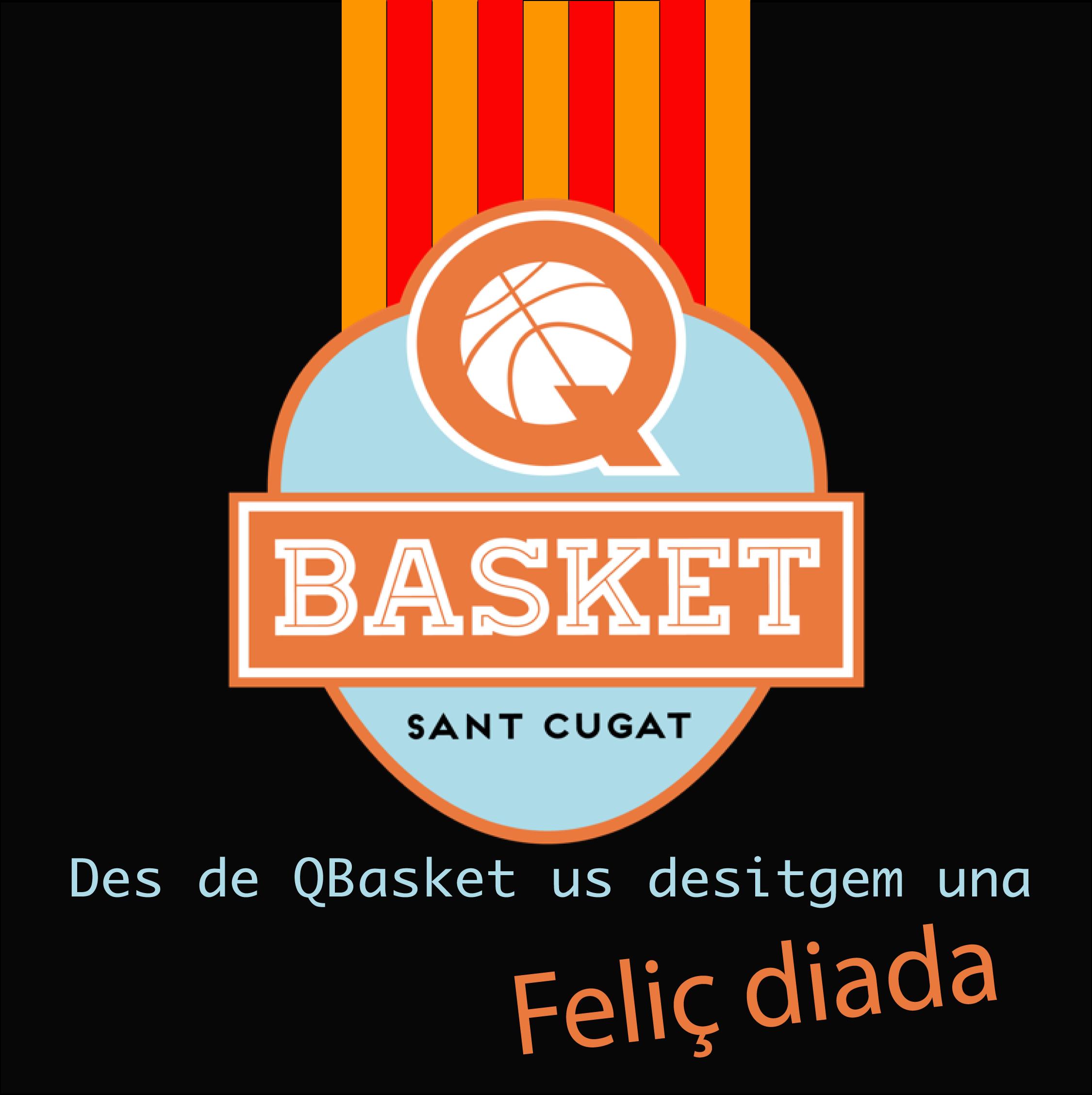 Qbasket_diada